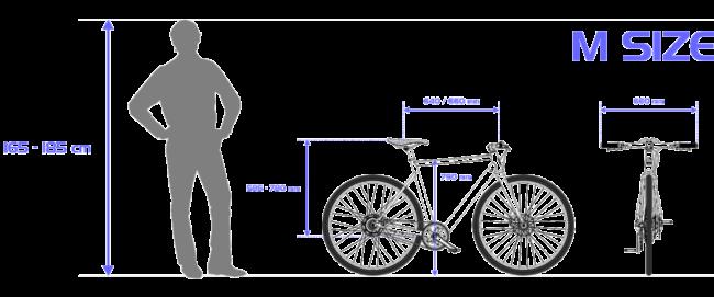 Desiknio Size Guide M