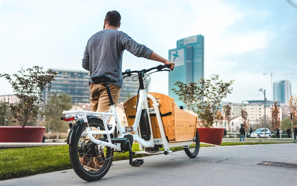 Yuba Electric Supermarche Lifestyle 16