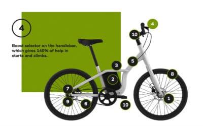Carmela 24 Details & characteristics 4