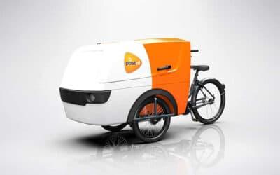 Centaur Cargo Trike XL Product 15