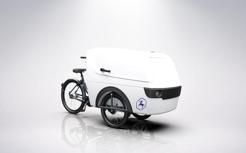 Centaur Cargo Trike XL Product 4