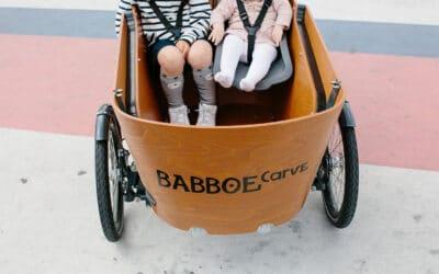Babboe Carve E Mountain Lifestyle 3