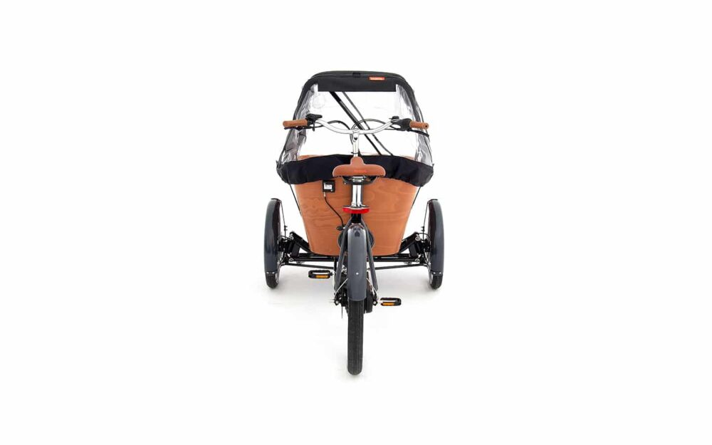 Babboe Carve E Mountain Product 11