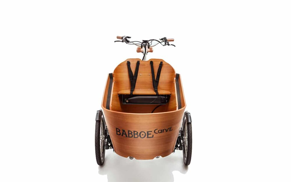 Babboe Carve E Mountain Product 26