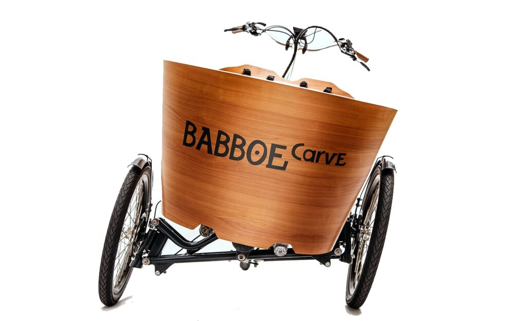 Babboe Carve E Mountain Product 27