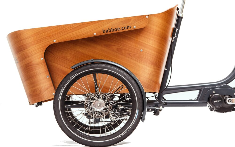 Babboe Carve E Mountain Product 29