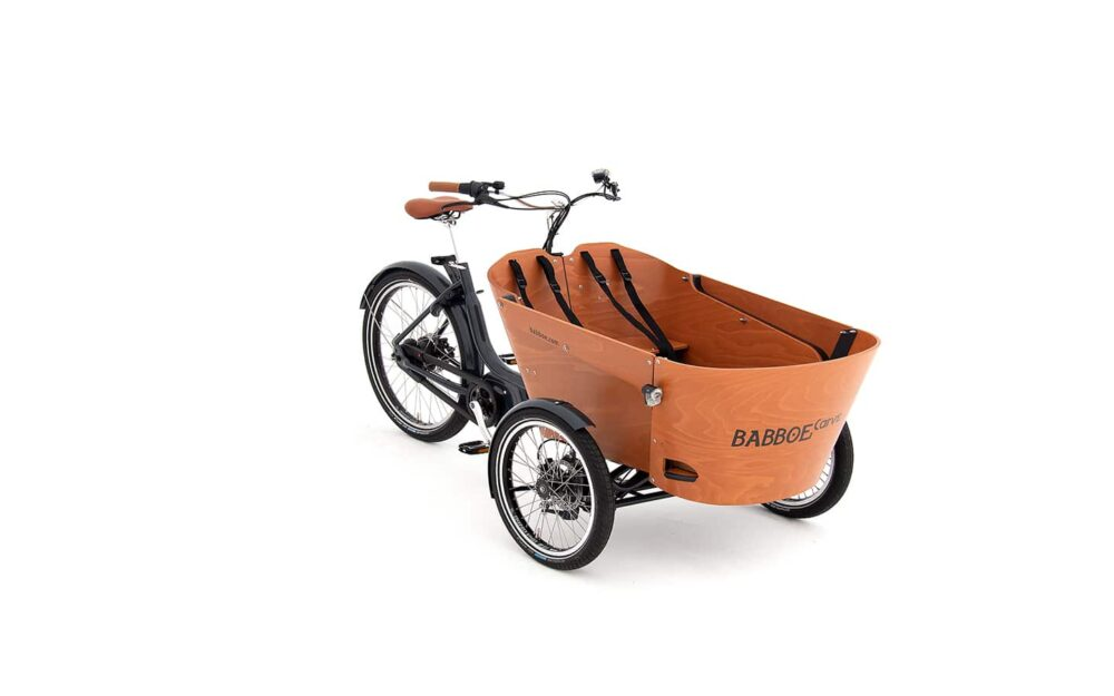 Babboe Carve E Mountain Product 8